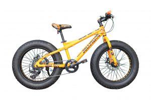 Fat Bike 20″